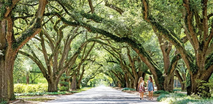 aiken sc - best small towns in the south southern living